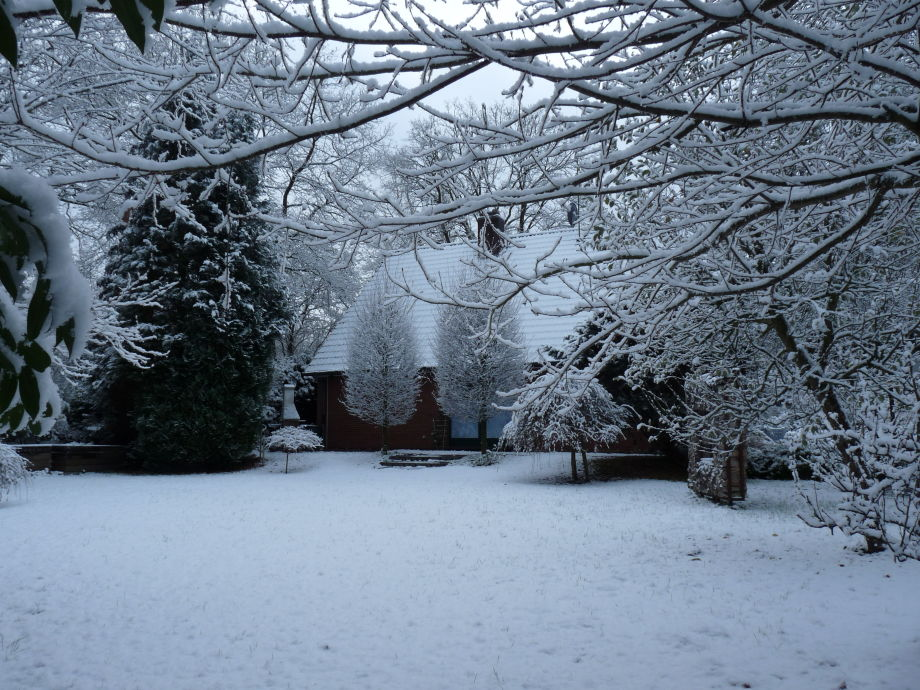Winterliche Oase