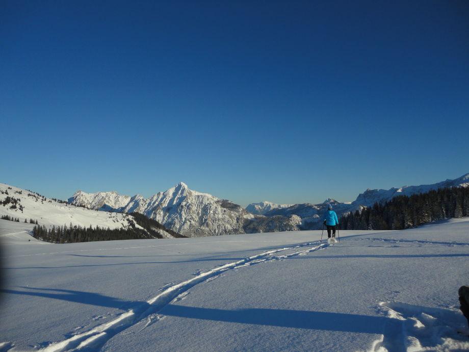 Ferienwohnung Ronacher Salzburger Land Lammertal