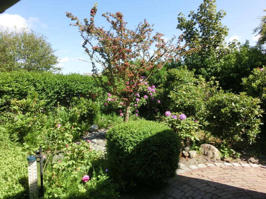 Bungalow De Blenck 37, Nordholland - Frau Barbara Hohn