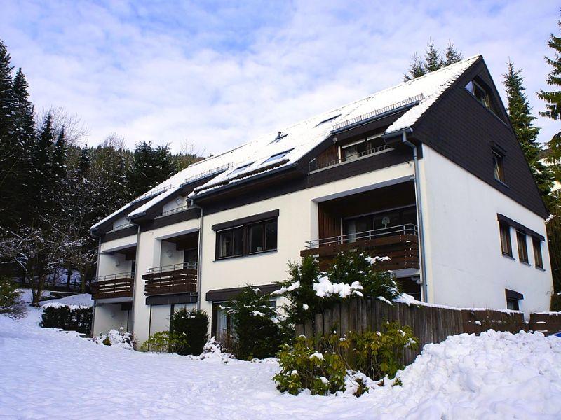 Ferienwohnung Hochsauerland Waldblick