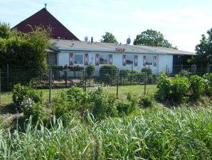 Ferienhaus Kerkwerve - ZE182