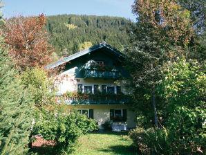 Ferienhaus Ski amadé mit Sauna