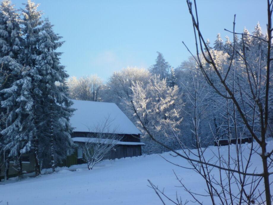 Winter = Sonne & Schnee