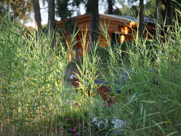 Ferienwohnung im Ferienpark Hesselhof