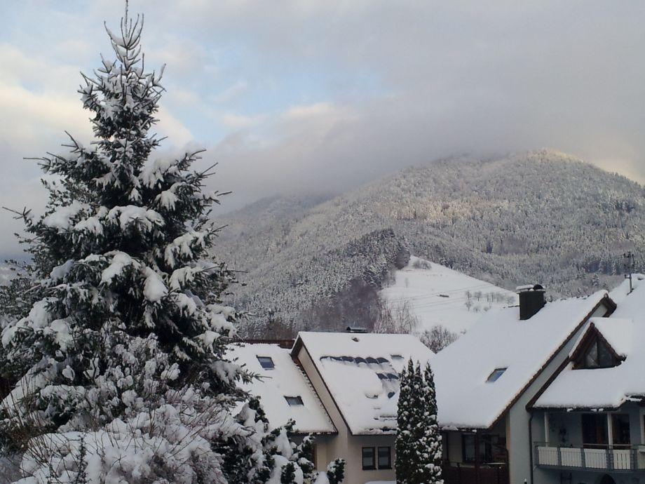 Winter im Ettersbach