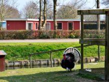 Ferienhaus in Andijk