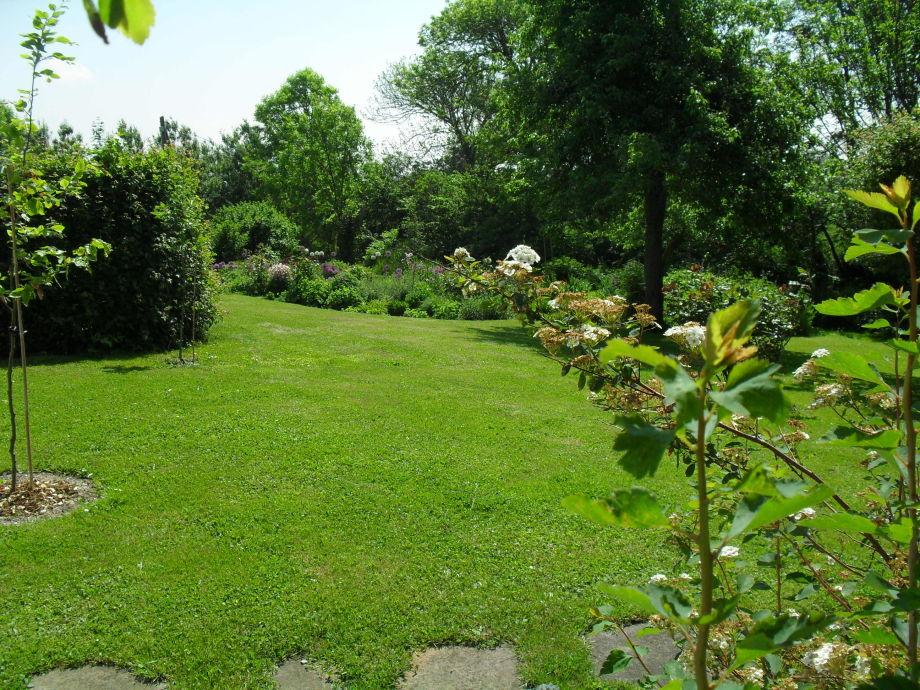 der erste Blick in den Garten