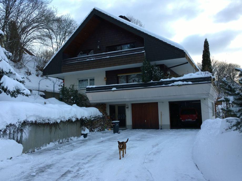 Das Haus im Januar