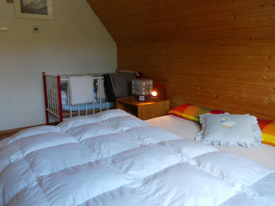 ferienhaus tatze hochschwarzwald aktion und erholung. Black Bedroom Furniture Sets. Home Design Ideas