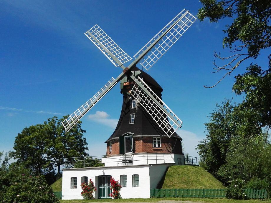 Außenansicht der Mühle
