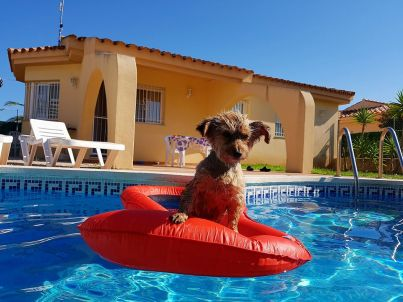 Menorca mit Privatpool (Urlaub mit Hund)
