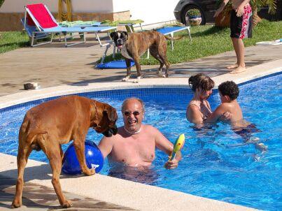 Jasmin 2 mit Privatpool (Urlaub mit Hund)