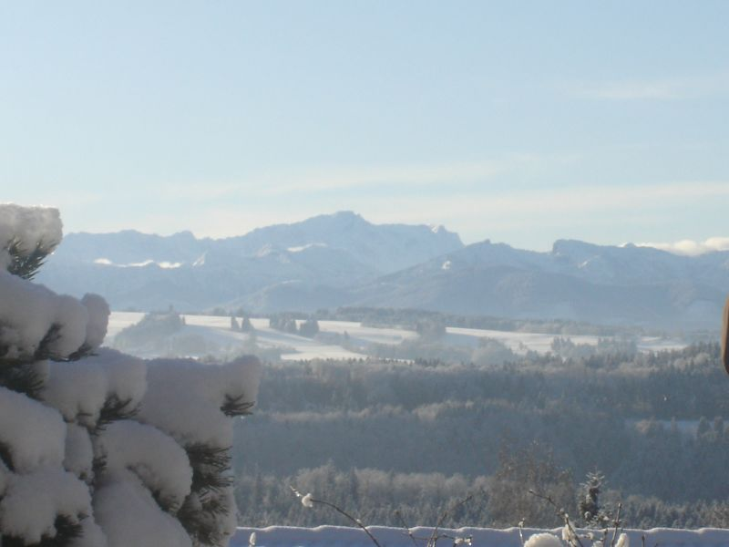 Holiday apartment alps view