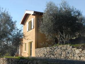 Ferienhaus Terra Oliva