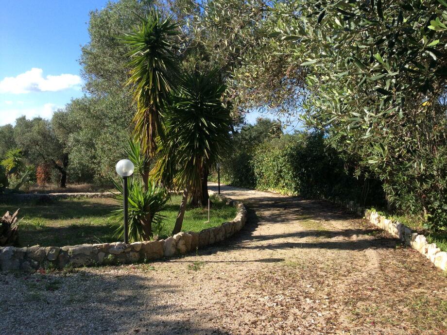 Auffahrt Villa Palma
