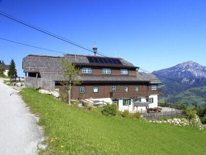 Alpenrosen in der Sonnenalm Mountain Lodge