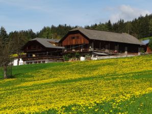 Bauernhof Hochwieserhof