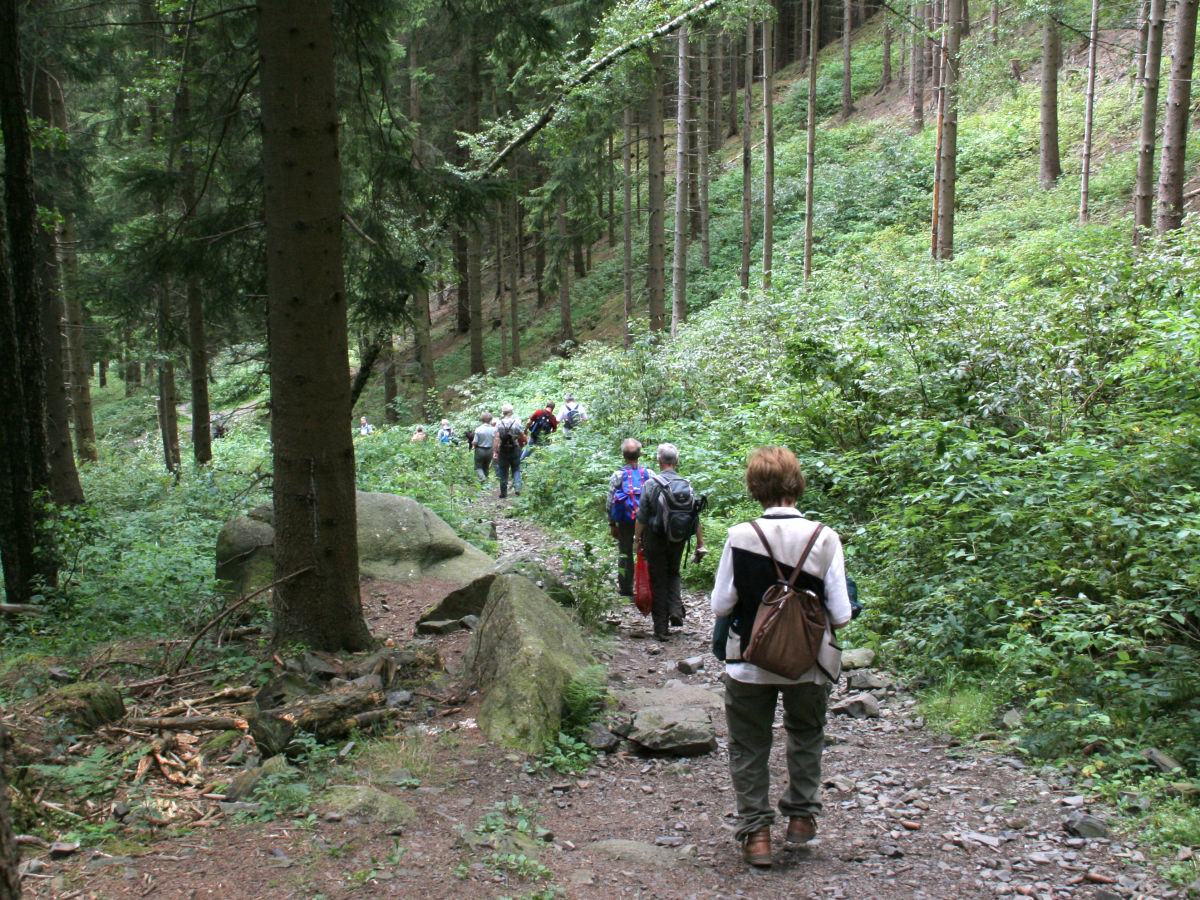 Wandern Harz Singles