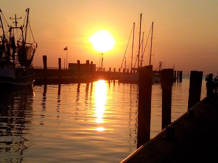 Abendstimmung am Kutterhafen