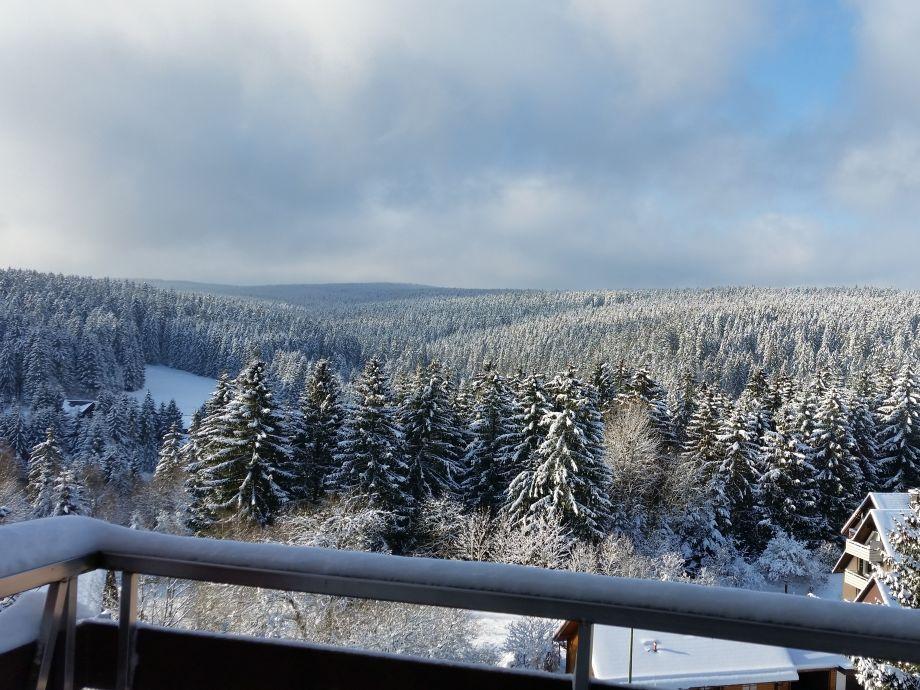 Ausblick Balkon links