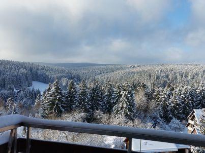 Traumblick-Harz-Altenau