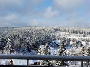 Ferienwohnung Traumblick-Harz-Altenau