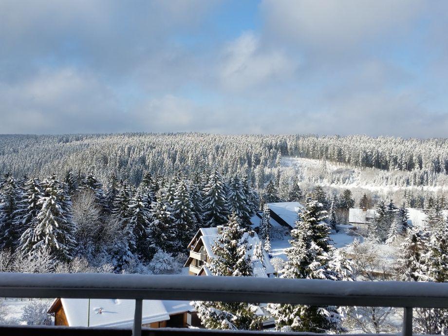 Ausblick Balkon rechts
