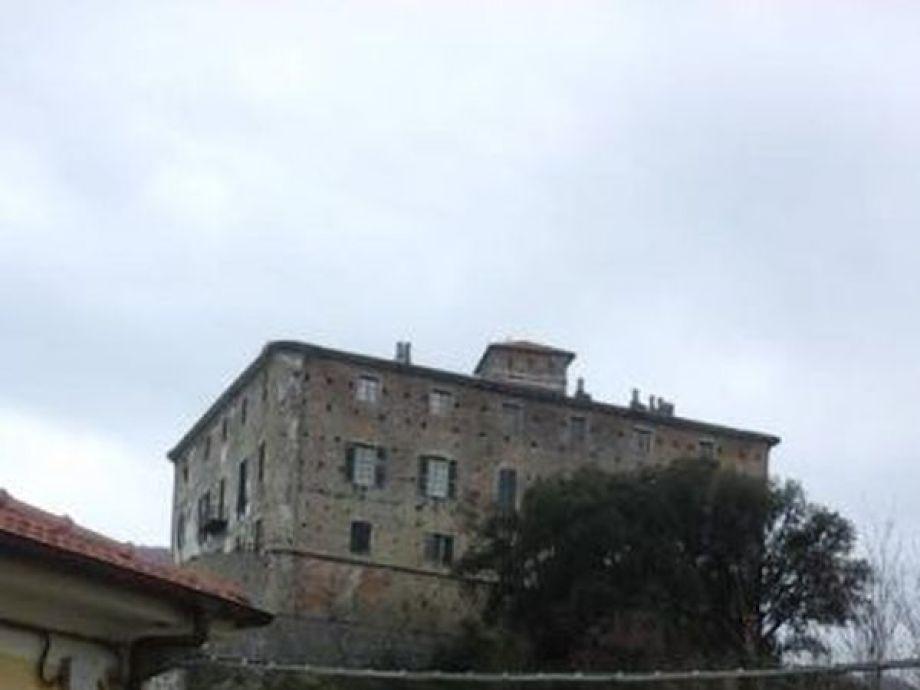Außenaufnahme Tiziana Panizza