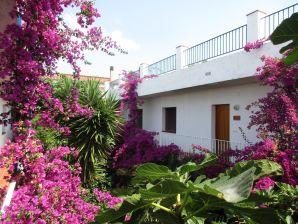 Holiday apartment Patio El Penell
