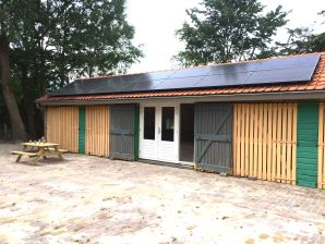 Ferienhaus Grijpskerke - ZE494