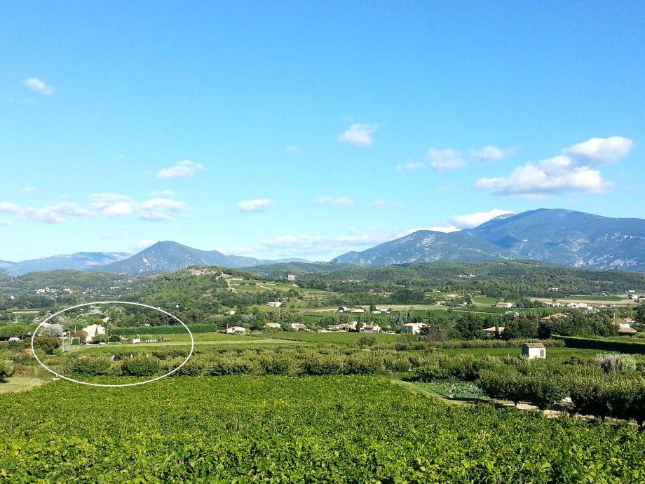 Übersicht Domaine mit Mont Ventoux