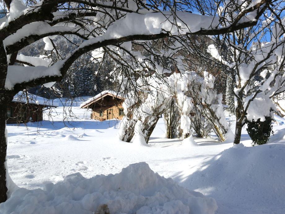 Weißer Wintertraum
