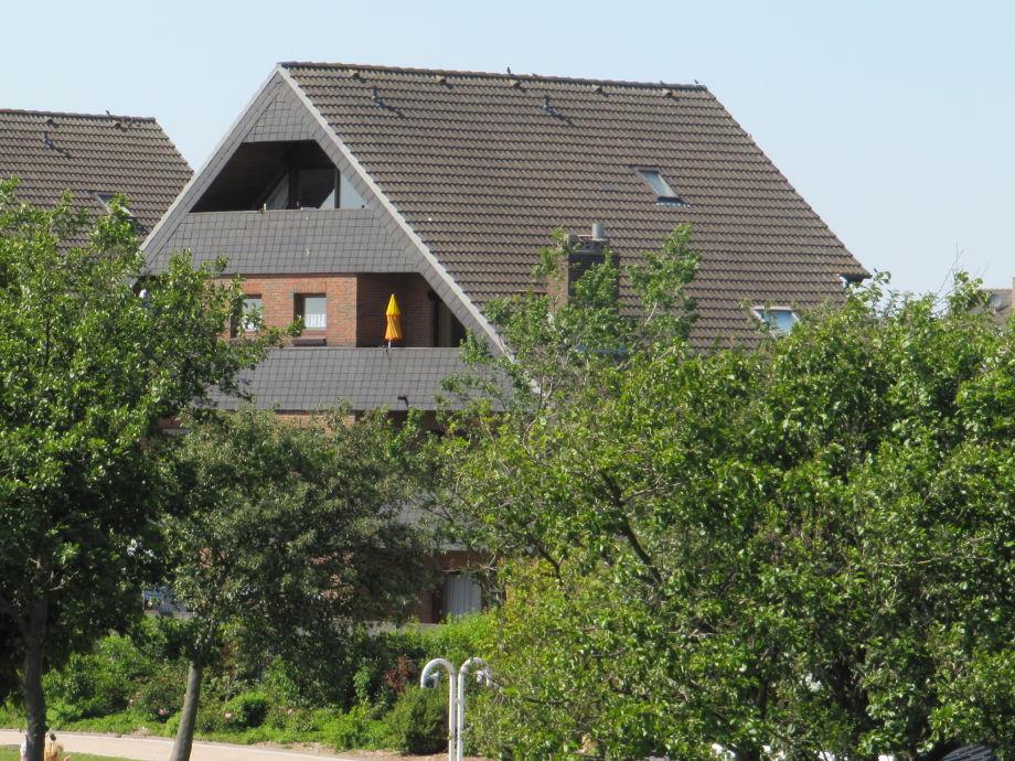 Das Haus im Frühjahr vom Deich fotografiert