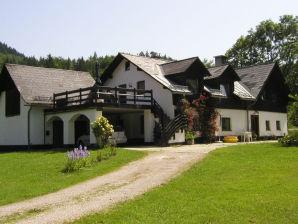 Ferienhaus Hiessberger