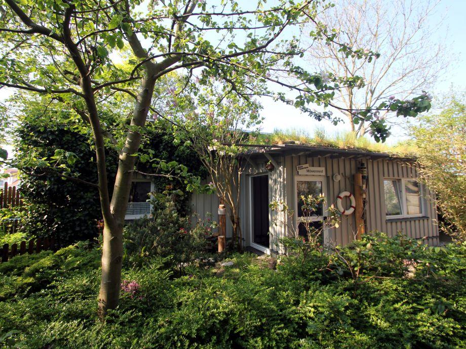 eine grüne Oase ....das Haus Möwennest
