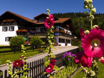 Ferienwohnung Keller - Bergblick