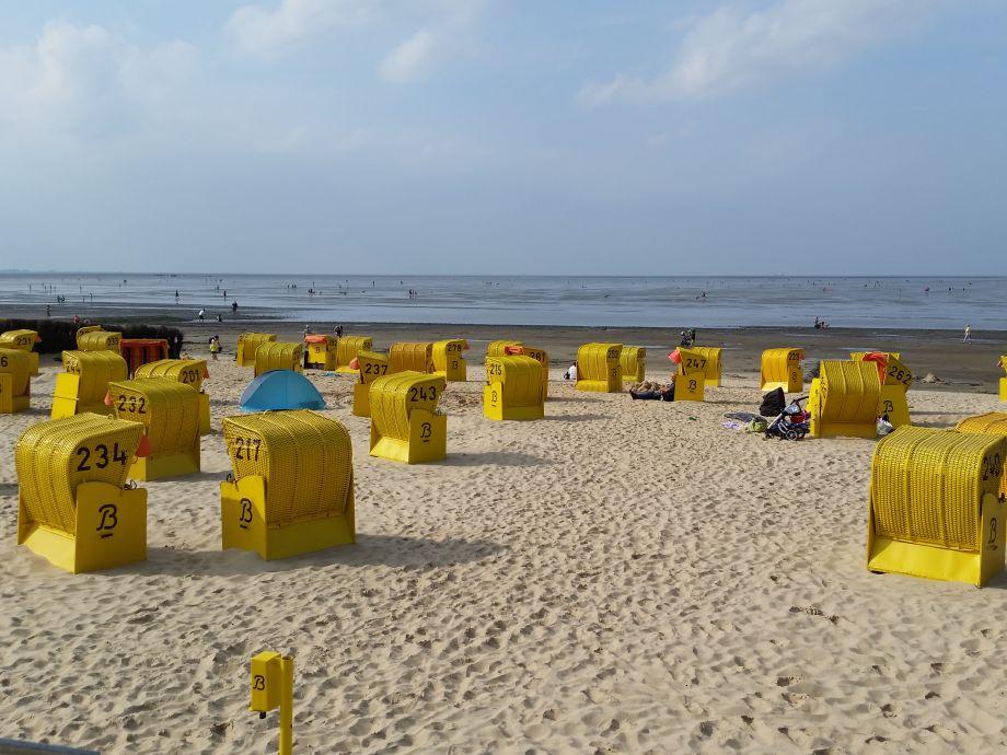 Kilometerlanger, sauberer und feinsandiger Strand