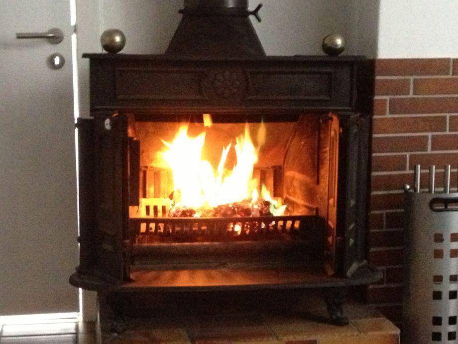 Kaminfeuer für gemütliche Abendstunden