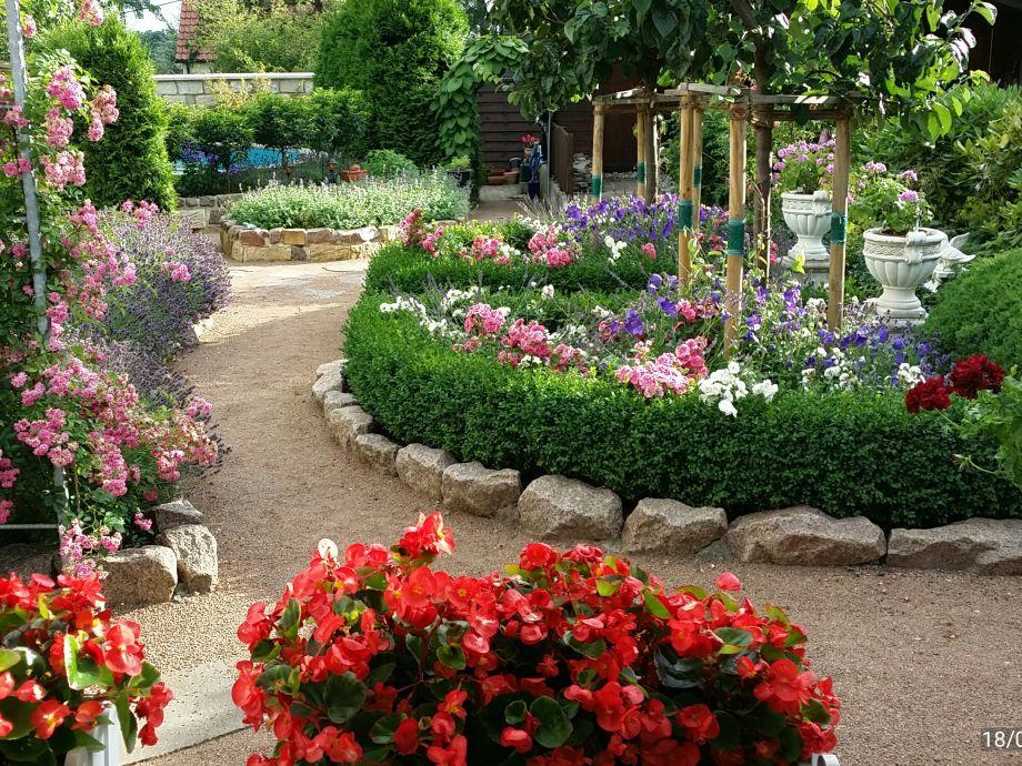 Blick in den Blumen-Garten
