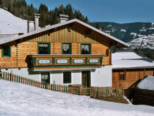 Holiday house Almliesl RAUR-241
