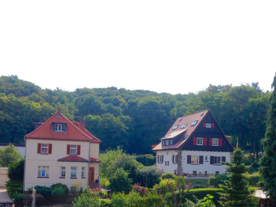 Ausblick Balkon zum Tannenkopfnkopf