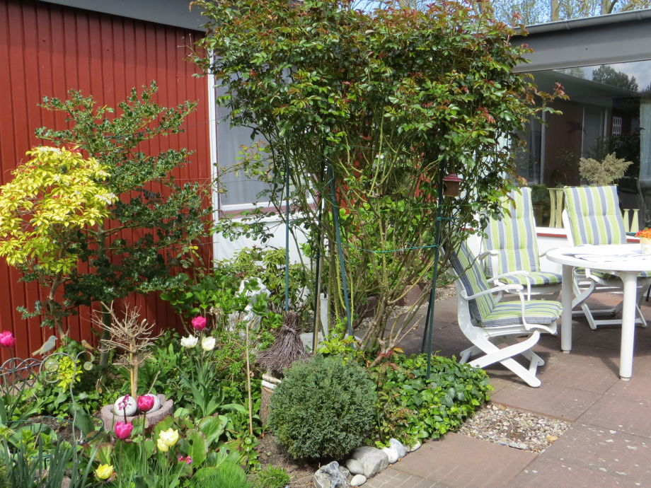 bungalow schr ters atrium l becker bucht frau simone schr ter. Black Bedroom Furniture Sets. Home Design Ideas