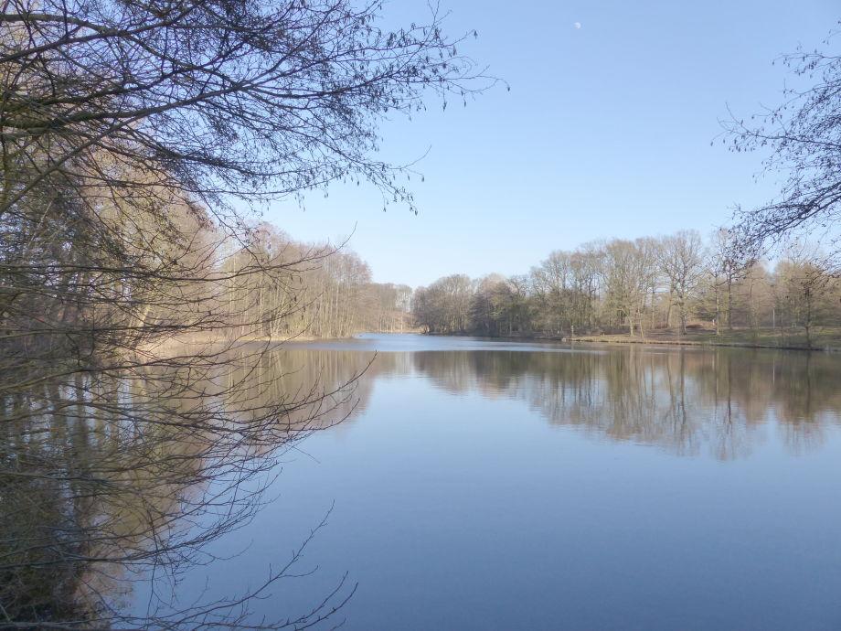 Ein Blick auf den See im Frühjahr 2015