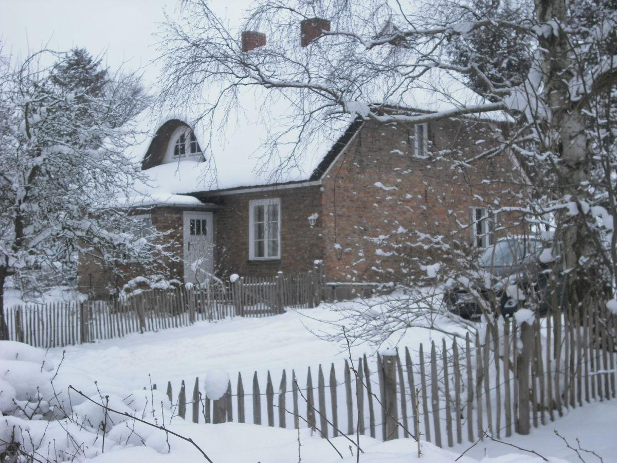 Ferienhaus reetdachhaus am teich ostsee frau dr doris for Teich im winter