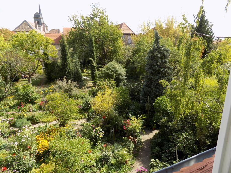 Ausblick auf Freinsheims scönsten Garten und Stadtmauer