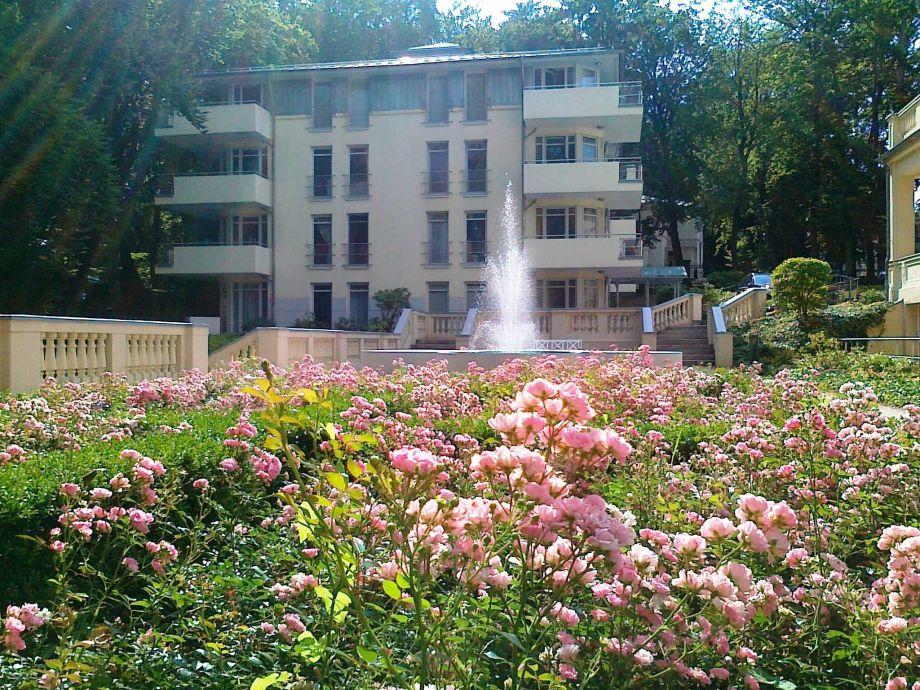 Rosengarten und Springbrunnen