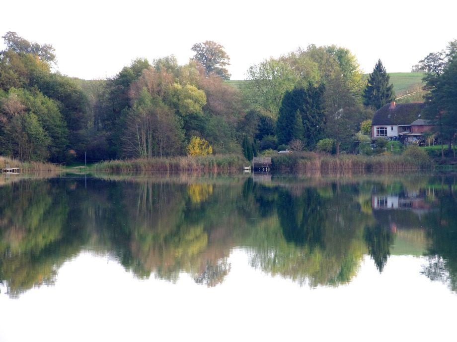 Ferienwohnungn im Haus am See in Ulrichshusen