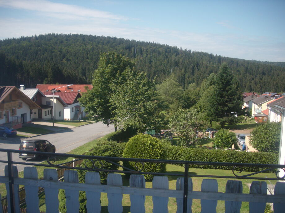 Blick vom Balkon direkt am Nationalpark