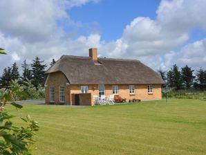 Ferienhaus Dommersø Hus (C370)