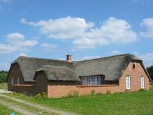 Ferienhaus Vester Mosehus (C260)